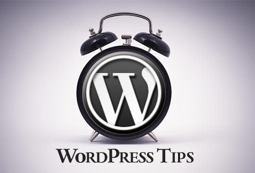 /images/post/2014/07/15/20//Top-6-Essential-Tips-for-WordPress-Beginners.jpg